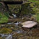 Bridge over troubled water by andy lewis