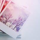 Stack o' Polaroids by Bethany Helzer