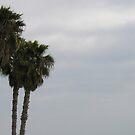 Stormy Palms by KaytLudi