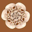 Skull Blossom - Caramel by BetsyRiley