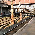 rail 4 by H J Field