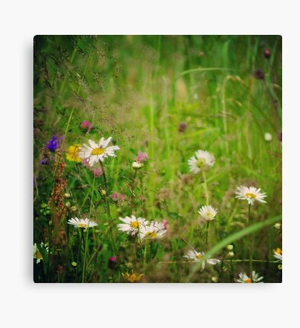 Floral nature Canvas Print