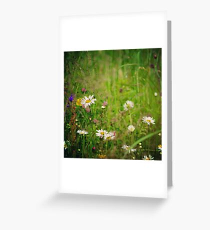 Floral nature Greeting Card