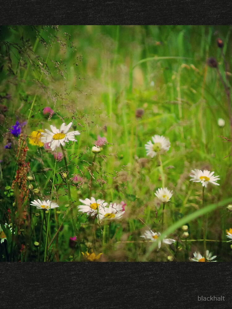 Floral nature by blackhalt