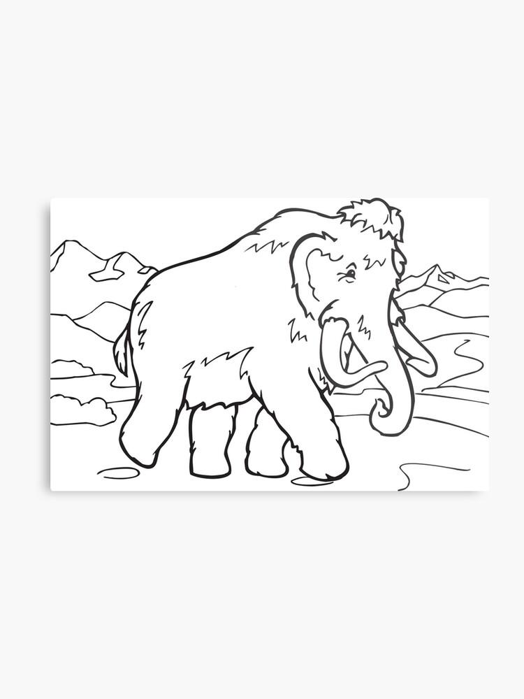 Lienzo Metálico Animal De Dibujos Animados Para Colorear Arte Línea