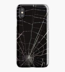 dramatic Intricate spider web on black background  iPhone Case/Skin