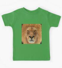 Male Lion Kids Clothes