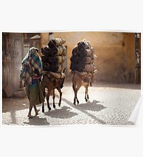 Ethiopia - people, animals and transport Poster