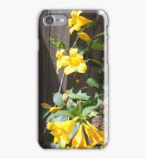 Carolina Jasmine iPhone Case/Skin