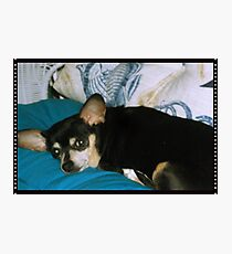 Sweet Missy Girl Photographic Print