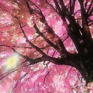 Pink  Maple Tree For Katie S. A Memorial   by Corinne Noon