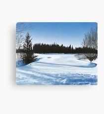 Winter Lanscape Canvas Print