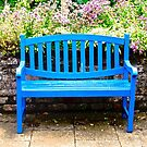 Blue Bench by Shulie1