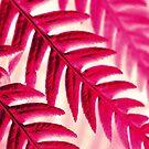 Nature Pattern # 1 - Fern (Red Pink) by Kitsmumma