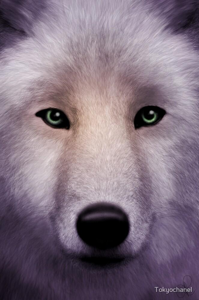 Wolf by Tokyochanel