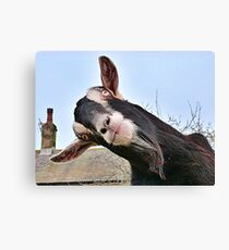 The Nosy Goat (2) Canvas Print