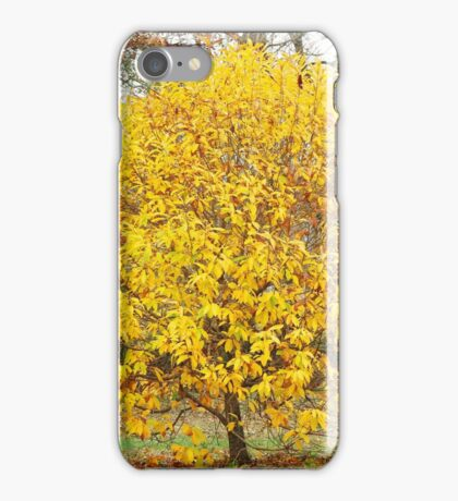 A Yellow Tree iPhone Case/Skin