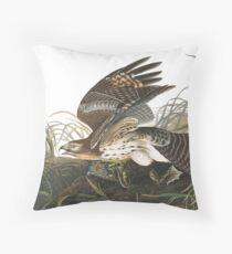 Red-shouldered Hawk - John James Audubon Throw Pillow