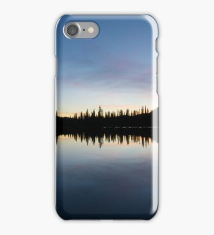 Forget-Me-Not Pond iPhone Case/Skin