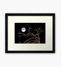 Nature Dark Scene Framed Print