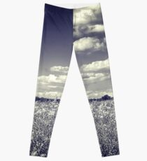 Following Dreams Leggings