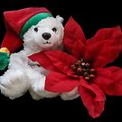Christmas Teddy by Heather Friedman