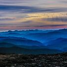 Top of the World by Shari Galiardi