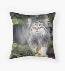 Wild Cats - Pallas Cat Throw Pillow