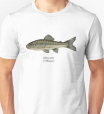 Minnow. T-Shirt