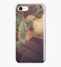SECRET FLOWERS OF PARADOX iPhone Case/Skin