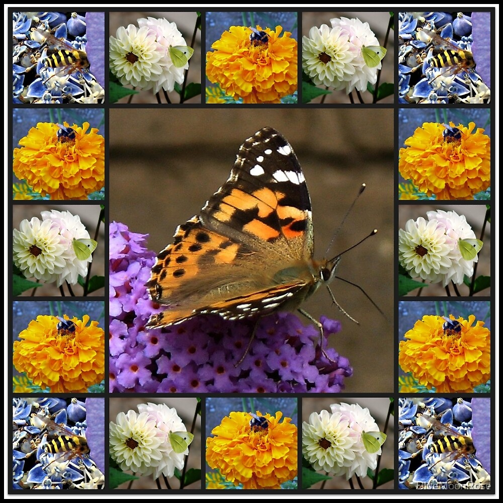 Bees and Butterflies Collage by BlueMoonRose