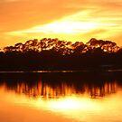 Golden Sunset by Bob Hardy