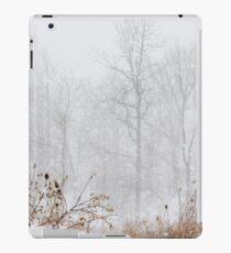Winter storm on the mountain iPad Case/Skin