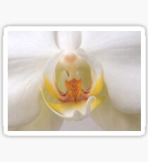 Into The Orchid Sticker