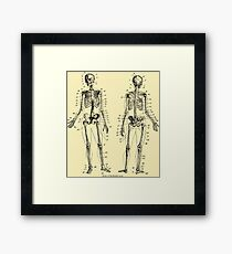 Anatomy: The Skeletal System Ver.Bone Framed Print