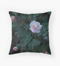 Quiet Reflection Throw Pillow