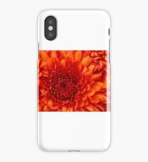 abcd iPhone Case/Skin
