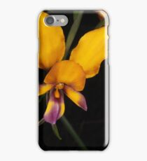 pansy orchid  Diuris magnifica iPhone Case/Skin