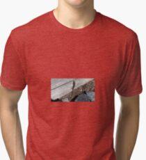 Eastern Water Skink - Blue Mountains Tri-blend T-Shirt