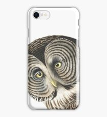 Great Gray Owl -  iPhone Case/Skin