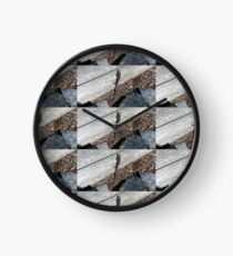 Eastern Water Skink - Blue Mountains Clock