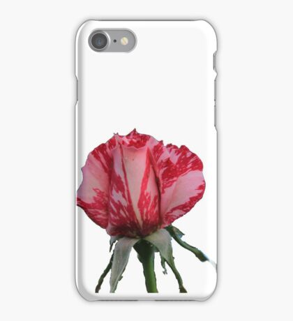Pink & Red Varigated Rose iPhone Case/Skin