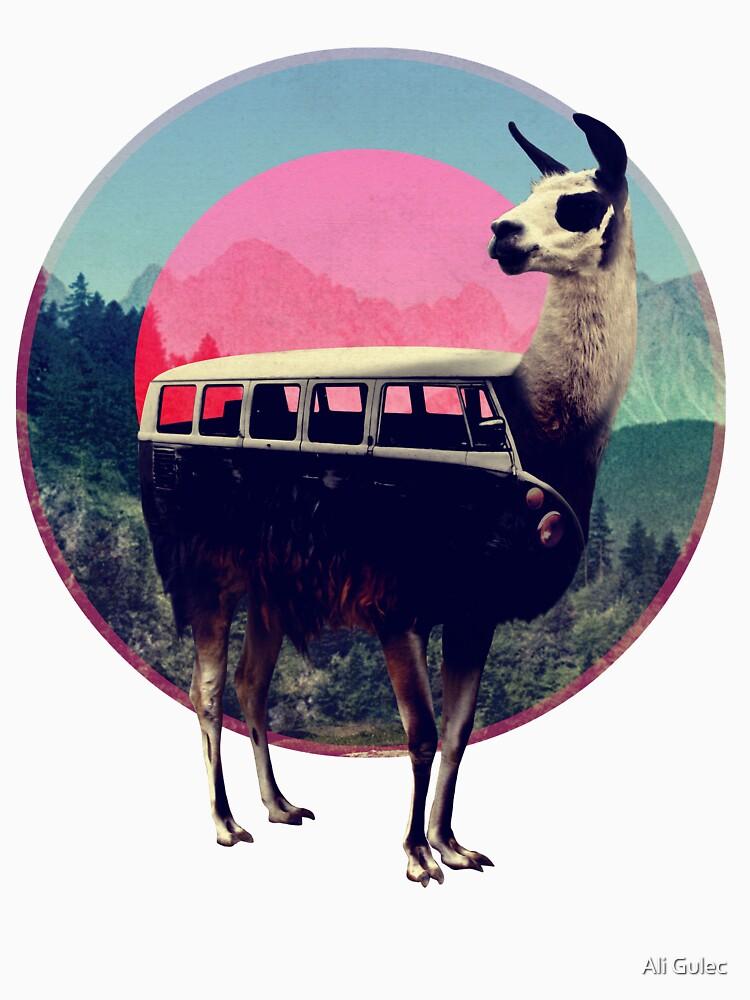 Llama by aligulec