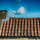 Dutch Roof at Kinderdijk Nederlands by Imagery