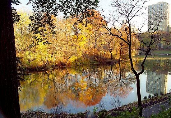 Autumn in New York by Alberto  DeJesus