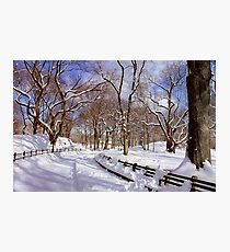 NYC Blizzard - Central Park Photographic Print