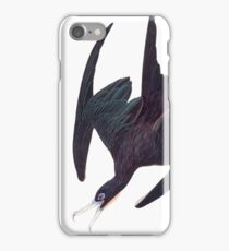 Frigate Bird - John James Audubon iPhone Case/Skin
