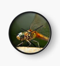Yes, I Love Dragonflies Clock
