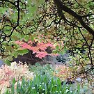 Autumn: Branches Lowered by CreativeEm