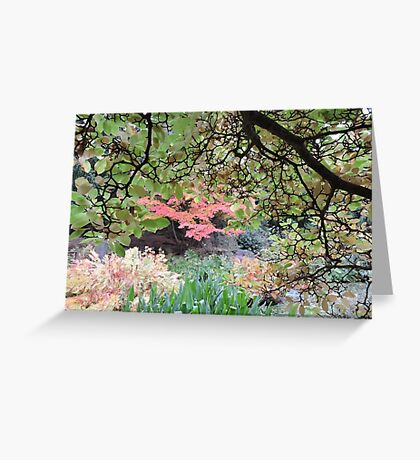 Autumn: Branches Lowered Greeting Card